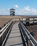 Wooden path to the lake view tower. Pedestrian walkway with handrails passing through dry reeds in the lake to the bird watching tower, all around is shallow royalty free stock photos