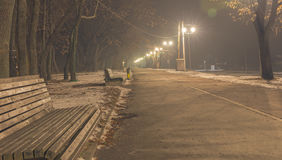 Pedestrian way on the foggy night Belgrade Serbia Royalty Free Stock Images