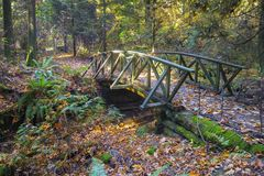 Wooden Bridge Hiking Trail Lush Autumn Foliage Stanley Park Vancouver BC Canada stock images