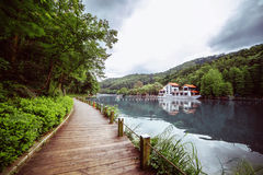 Pedestrian wooden walkway along the lake. Green plants Royalty Free Stock Photos