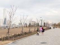Pedestrian zone in Tokyo Royalty Free Stock Image