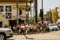 Pedestrians cross traffic on Hollywood Boulevard at daytime. stock images