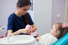 Pediatryczny dentysta kształci uśmiechniętej małej dziewczynki o właściwy szczotkować, demonstruje na modelu wcześnie Obrazy Stock