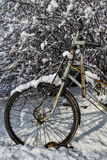 A pedicab tyre covered by the snow Royalty Free Stock Photos
