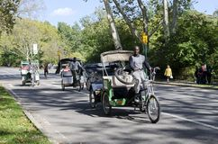 Pedicab w central park Obrazy Royalty Free
