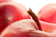 Pedicle on the apple Royalty Free Stock Photo