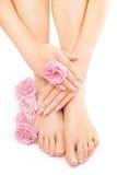 Pedicura y manicura con una flor color de rosa rosada Fotografía de archivo libre de regalías
