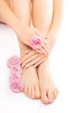 Pedicura y manicura con una flor color de rosa rosada Imagen de archivo libre de regalías