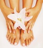 Pedicure маникюра при конец лилии цветка вверх изолированный на белых совершенных руках формы Стоковые Фото