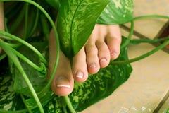 pedicure ноги Стоковое Изображение