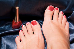 Free Pedicure Royalty Free Stock Photo - 11057125