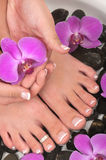 pedicure Royaltyfri Bild
