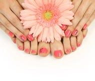 Pedicure. Beautiful pink manicure and pedicure royalty free stock photo