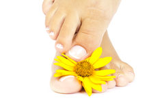 Pedicure Stock Images