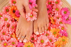 Pedicure Fotografia Stock