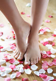 Pedicure. Female feet on wooden floor sorrounded by rose-petals