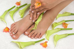 Pedicure Royalty Free Stock Photography