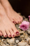 Pedicure Immagine Stock