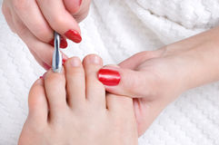 Pedicure applying. Body care series. pedicure applying - toe nails cleaning and moisturizing with special solution Stock Photos
