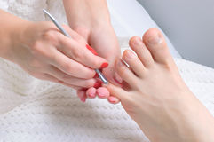 Free Pedicure Applying Stock Images - 7884814