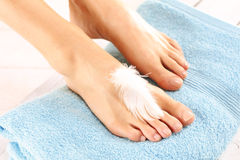 Pedicure, beautiful female feet Royalty Free Stock Image