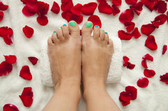 Pedicure in a beauty salon - woman feet ready for treatment. Pedicure in a beauty salon - woman feet lying on towel among rose petals, ready for treatment Royalty Free Stock Photography