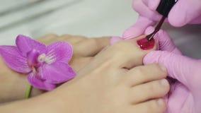 Pedicure con un fiore dell'orchidea archivi video