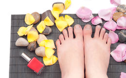Pedicure Concept Royalty Free Stock Image