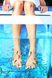 Pedicure de station thermale de poissons Image libre de droits