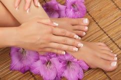 Pedicure e stazione termale del manicure Fotografia Stock