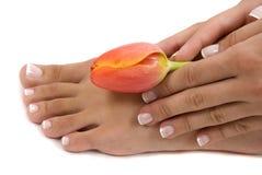Pedicure en Manicure stock afbeelding