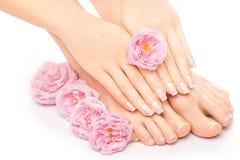 Pedicure en manicure met een roze roze bloem Stock Fotografie
