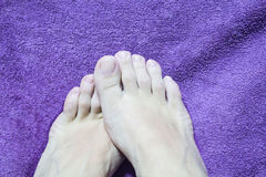 Pedicure. Royalty Free Stock Images