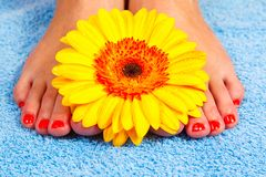 Pedicure on foot Royalty Free Stock Photography
