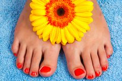 Pedicure on foot Royalty Free Stock Image