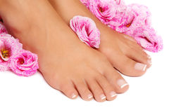 Pedicure francese Immagine Stock