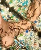 Pedicure by garra rufa fish Stock Images