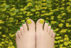 Pedicure in the grass. Stock Photo
