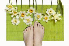 Pedicure with green nail Polish and slider. With daffodils.Nail design on green background with flowers royalty free stock image