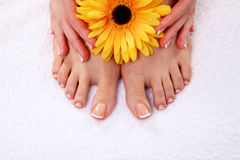 Pedicure on legs and beautiful manicure on hands Royalty Free Stock Photos