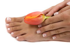 Pedicure and Manicure Stock Image