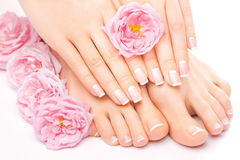 Pedicure and manicure with a pink rose flower. French pedicure and manicure with a pink rose flower isolated on the white