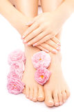 Pedicure and manicure with a pink rose flower Royalty Free Stock Images