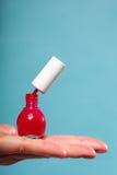 Pedicure manicure red nail polish on female palm Stock Photo