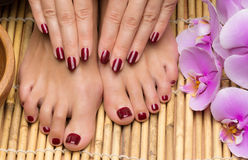 Pedicure and manicure in the salon spa Stock Photos