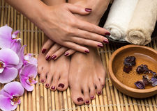 Pedicure and manicure in the salon spa stock photography