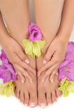 Pedicure and Manicure Spa Royalty Free Stock Photo