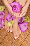 Pedicure and Manicure Spa Royalty Free Stock Image