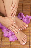 Pedicure Manicure Spa Stock Photography