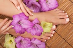 Pedicure Manicure Spa Stock Photo